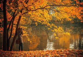 Pomalu se blížící podzim je ideální dobou na detoxikaci organismu