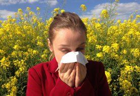 Nejlepší pomoc při potížích s alergií