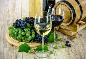 5 rad jak vybrat dobré víno