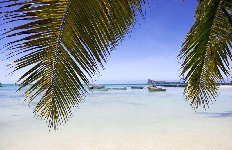 Rajský Mauricius