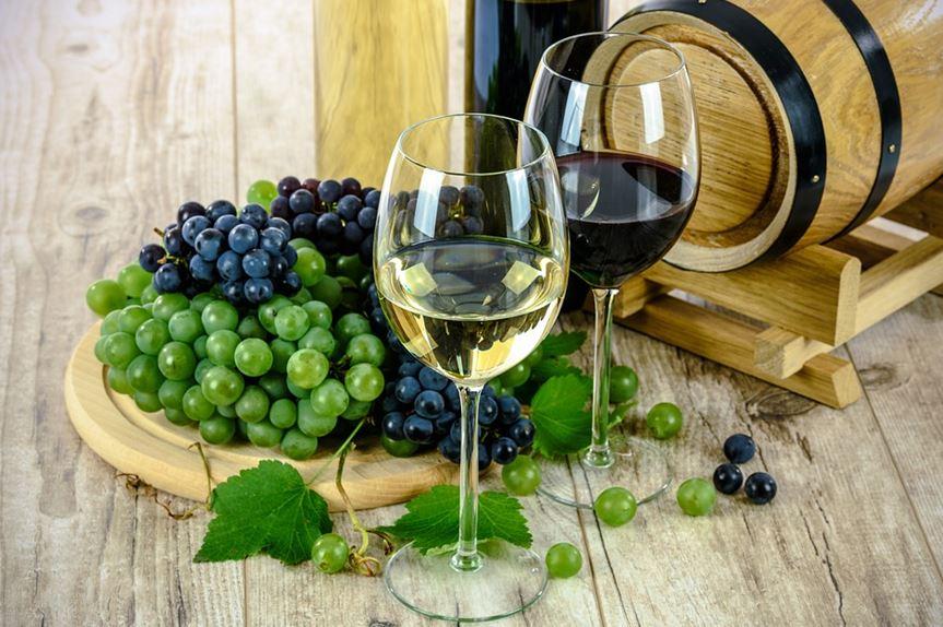 Kvalitní víno je přítelem člověka