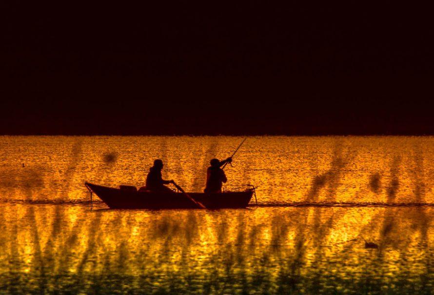 Máte doma rybáře a lámete si hlavu s tím, co mu nadělíte pod stromeček? Nechte se inspirovat!