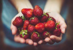 Jak zužitkovat sladké plody léta? Připravte znich lahodné šťávy!